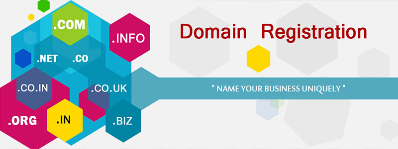 Domain and Hosting